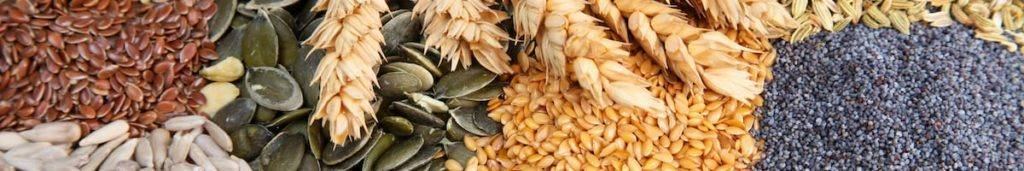 Pantry Staples Master List Assorted Seeds, Grains, and Rice